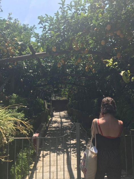 I Giardini di Cataldo